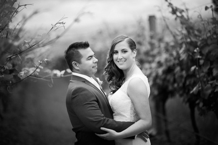 wedding at stones of the yarra valley vines