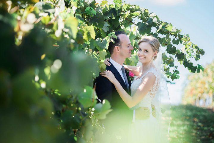 vue on halcyon wedding